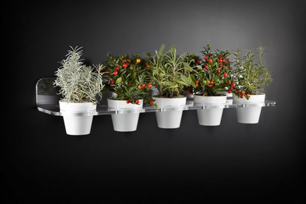 g5-vasi-bianchi_piante